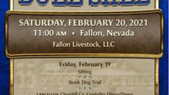 55th Annual Fallon All Breeds Bull Sale
