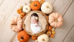 Birth Announcement - Olivia Reynolds