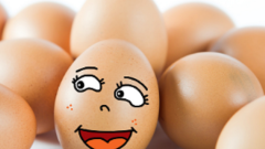 Egg on Our Face -- Corrections
