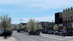 Fallon Maine Street Program Will Press On