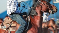 Fallon roper on his way to PRCA Rookie of the Year award