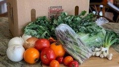 Food Hub Expands their Local Farm Share Subscription Boxes
