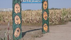 Get Lost in the Fairy Tales and Folklore -- Corn Maze at Lattin Farms