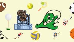 Local High School Sport Schedule