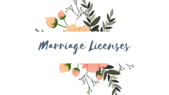 Marriage Licenses Issued July 2020