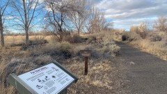 NAS Fallon Wetlands Nature Trail