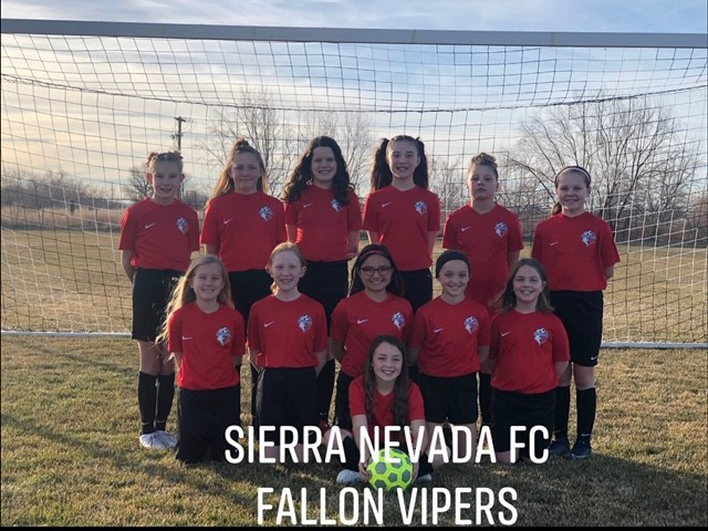 The Fallon Vipers - new youth soccer club