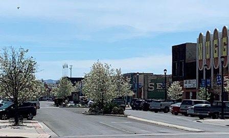 Maine Street Fallon Blossoms