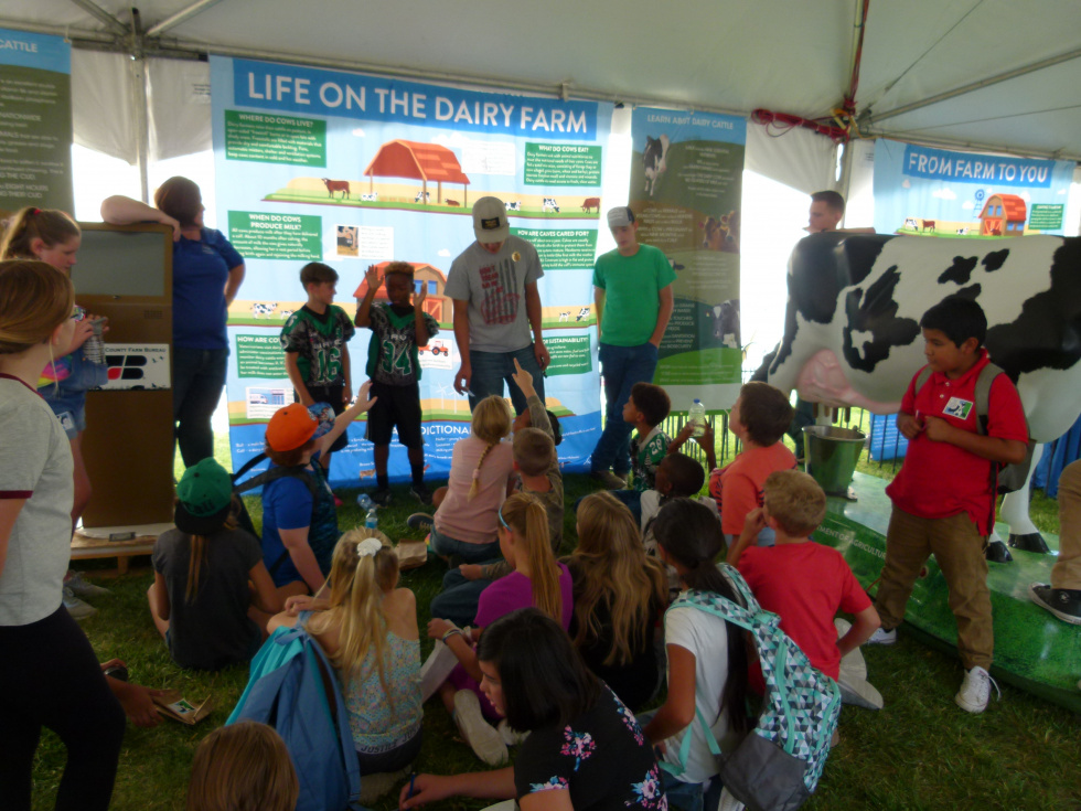 Numa Elementary Students Learn about Agriculture