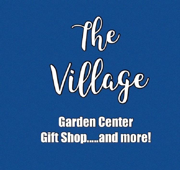 Business Pivot -- The Village
