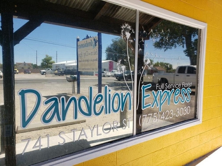 Dandelion Express Blows Many Wishes Out to Fallon