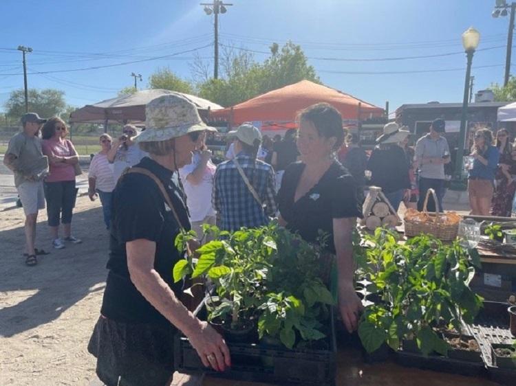 Green Goddess Market Huge Success