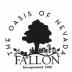 Fallon City Council - Special CDBG Meeting